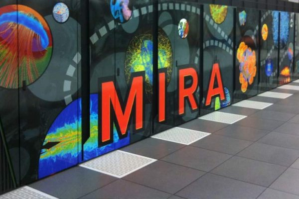 adhesive vinyl window and wall displays
